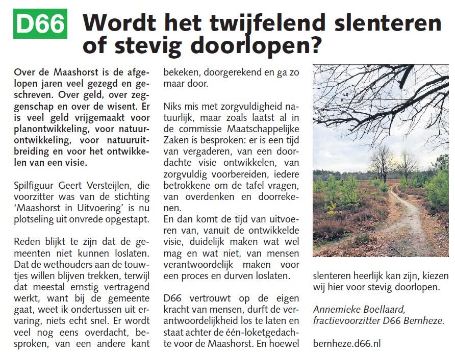Annemieke Boellaard, fractievoorzitter: Wordt het twijfelend slenteren of stevig doorlopen?